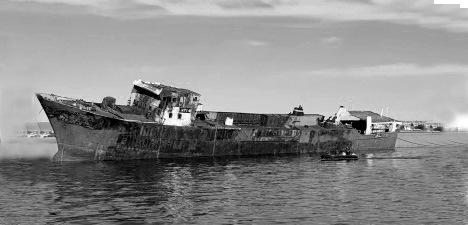 Nuevo parque submarino en la capital nacional del buceo – Puerto Madryn